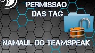TeamSpeak 3 – configurando permissões do ts