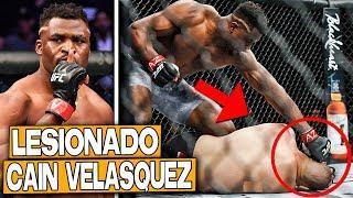 MMA en ESPAÑOL y Noticias del UFC en Español 🧡SUSCRIBETE▻ https://b...