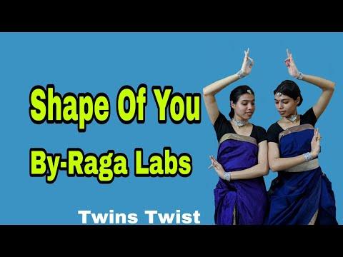 Shape Of You (ft.Aditya Rao) By Raga Labs | Dance Cover By~ Twins Twist.