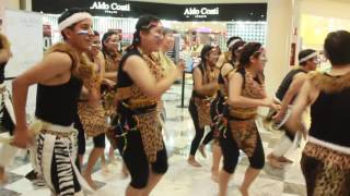iyf world culture camp mxico 2016 spot 8