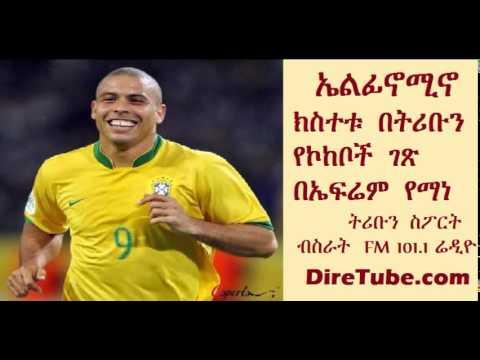 Tribune Sport - Elfinomino: by Efrem Yemane