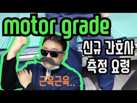 신규간호사 업무 요령 - motor grade(남간이 27화, 간호사팁, motor power grade,운동기능사정)