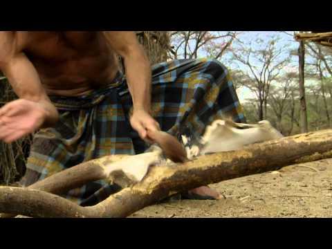 Vidéo À l'Épreuve d'Une Tribu (Nat Geo)