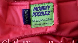 Cloth Diaper Review: Monkey Doodlez AIO Bamboo Cloth Diaper Thumbnail