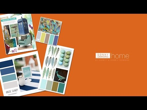 Donny Osmond 2014 Home Collection with Rachael Ray