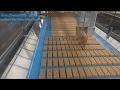 Granola Bar production line Snack-matic®Ux24 Cereal bar line,Ultrasonic Snack Bar machine,Energy Bar