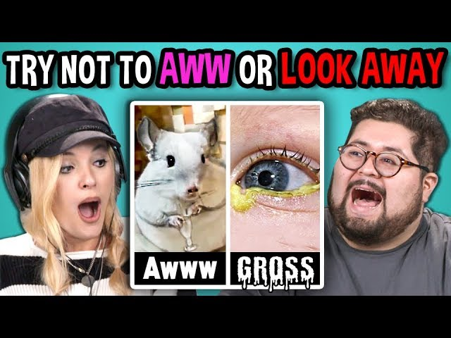 college-kids-react-to-try-not-to-aww-or-look-away-challenge-reddit-50-50