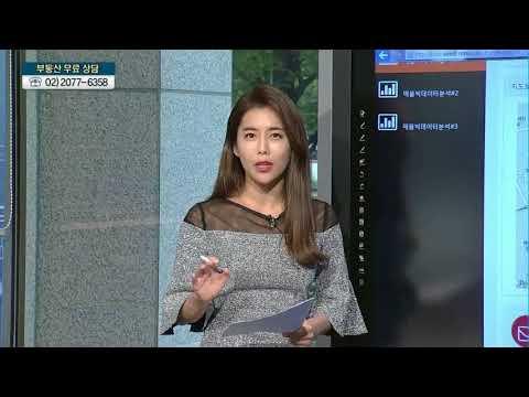 [실전 상담 '고고']  수도권 · 비수도권 신도시 아파트, 투자 전략은? - 최경화