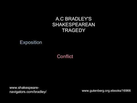 Lecture - Shakespeare's Tragic Hero