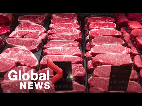 Coronavirus outbreak: Canada's food industries in crisis; More U.S. states to ease restrictions