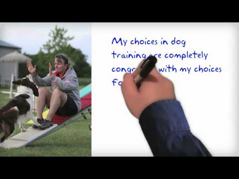 Dog Training Methods . . .Does Right & Wrong Exist?