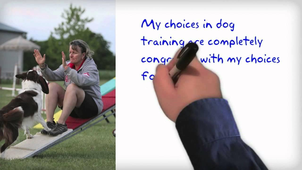 Proper Dog Training Methods – Do They Exist?