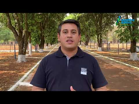 LOTE 1002 - DEPOIMENTO ARTHUR VIEIRA - REM IMPACTO ABS