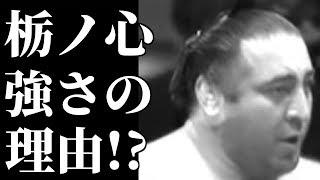 大相撲の関脇栃ノ心(30) =本名レバニ・ゴルガゼ、ジョージア出身、...