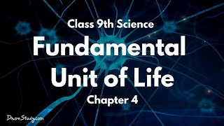 Fundamental Unit of Life : CBSE Class 9 IX Science (Biology)