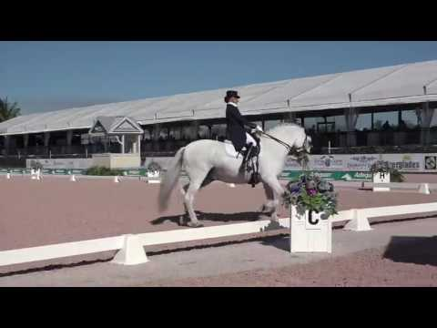 Patterson Dressage Music - The Sound of Music 2017 Inter 1 Freestyle
