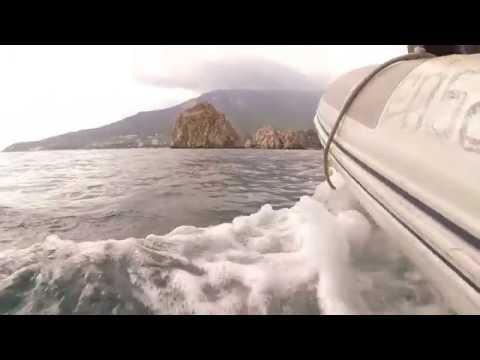 Веслые дельфины и флешмоб Кормите море камнями