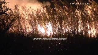 Lost Lake Fire - San Bernardino   RAW FOOTAGE