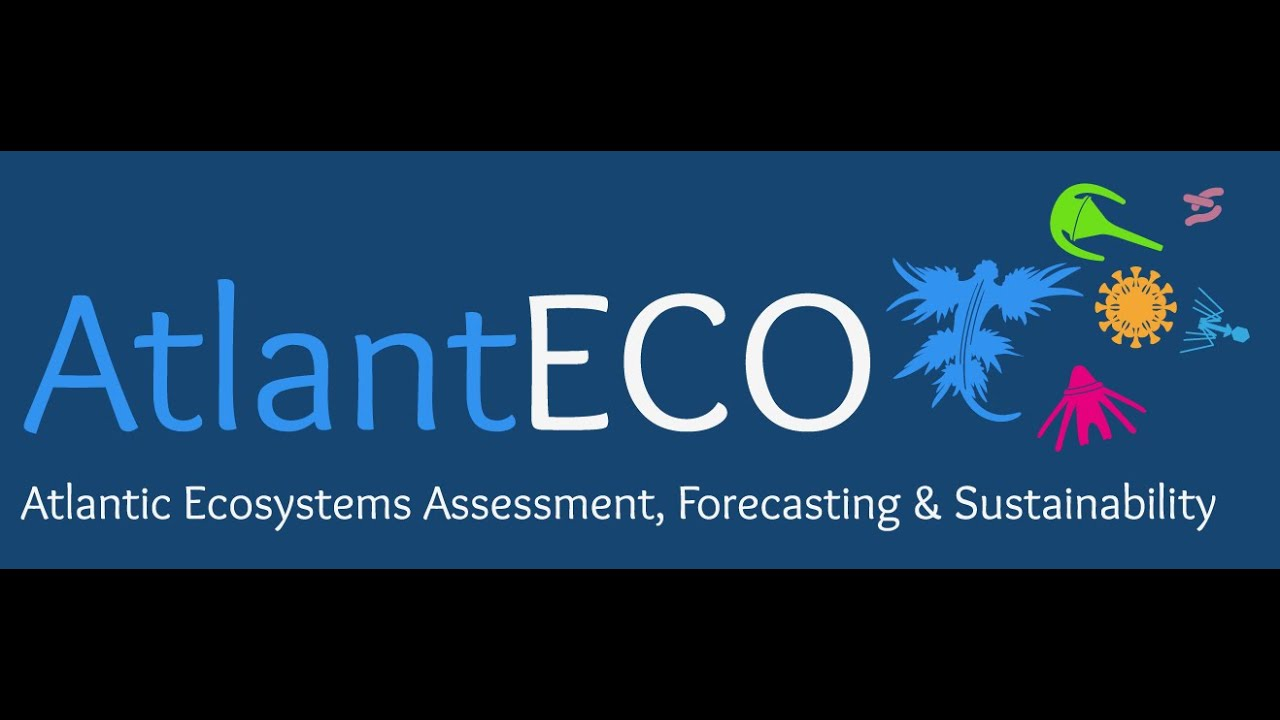 Want to know more about AtlantECO?