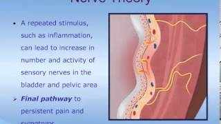 Understanding Interstitial Cystitis (IC)/Painful Bladder Syndrome (PBS)