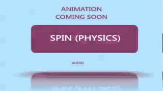 Spin (Physics)