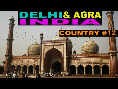 A Tourist's Guide to Delhi, India