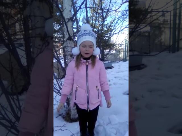 Изображение предпросмотра прочтения – ЕкатеринаИвченко читает произведение «Снежок» Ф.И.Тютчева