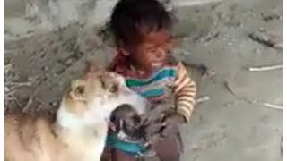 funny baby n dog fight for newborn puppy's  🐶