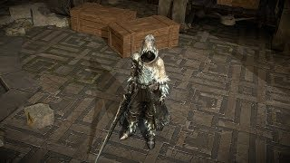Path of Exile: Arctic Crystal Armour Set