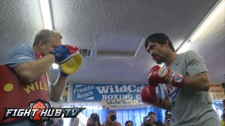 Watch Manny Pacquiao hit the mitts w/ Freddie Roach ahead of Mayweather fight