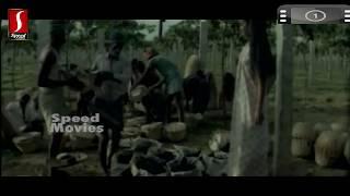 Pavizham Pole... Song From - Namukku Parkkan Munthiri Thoppukal - Malayalam Movie [HD]