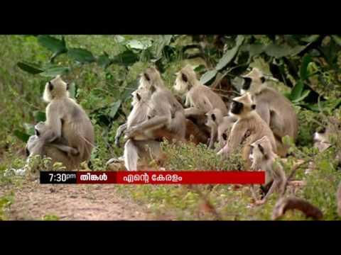 Ente Keralam PROMO  | എന്റെ കേരളം പ്രമോ  | 26 Jun 2017