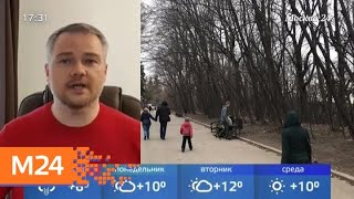 Смотреть видео В Москву ненадолго вернется снег - Москва 24 онлайн