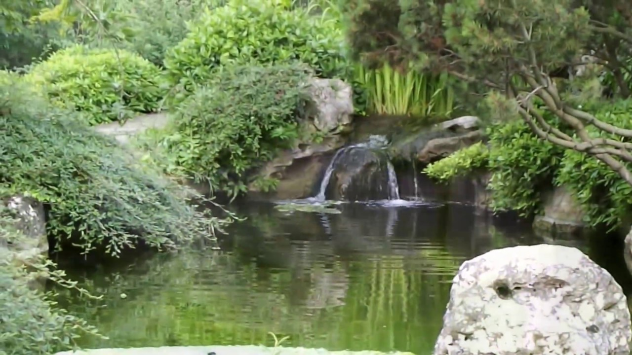 Giardino giapponese all orto botanico di roma ローマの 日本庭園