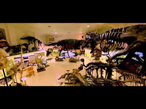 Dinosaur 13 - Trailer