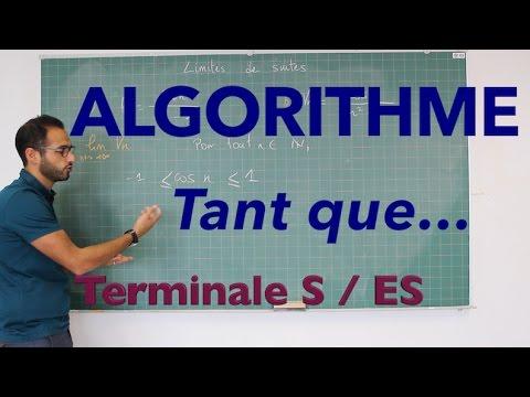 Algorithme - Tant