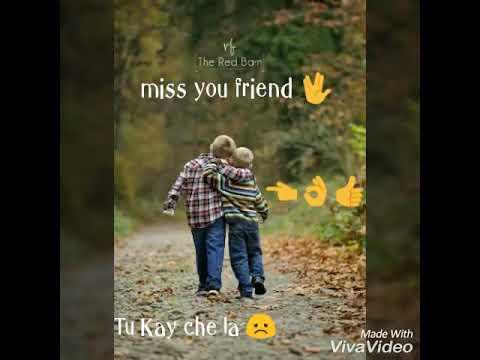 Miss You Friends Whatsapp Status Youtube