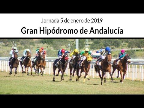 Directo, Gran Hipódromo de Andalucía, 5 de enero de 2019