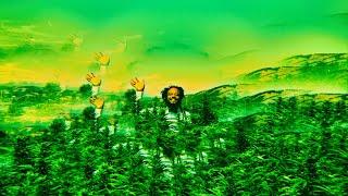 "Myke Bogan - ""Backwoods"" (Official music video)"