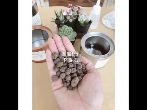 D . I .Y [防輻射 多肉植物 仙人掌 小盆栽 ]AHM Handmade