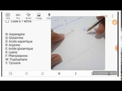 BioSnap 4 - Acides Aminés - Code à 1 lettre
