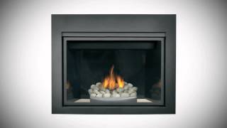 Napoleon® HDX40 Fireplace   eFireplaceStore com