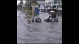 Download Video video lucu. Kecerobohan pengendara saat menerjang banjir MP3 3GP MP4