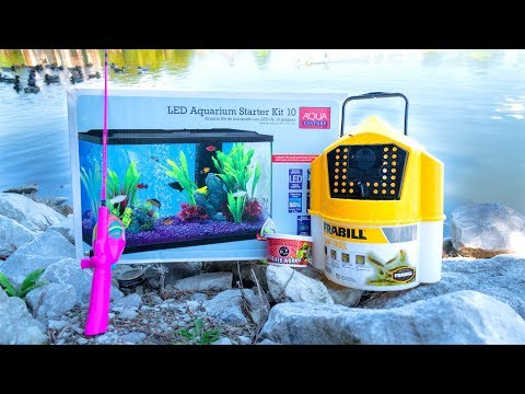 Thumbnail: MICRO Fishing for New PET FISH!!!