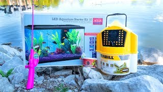 One of FLAIR's most viewed videos: MICRO Fishing for New PET FISH!!!