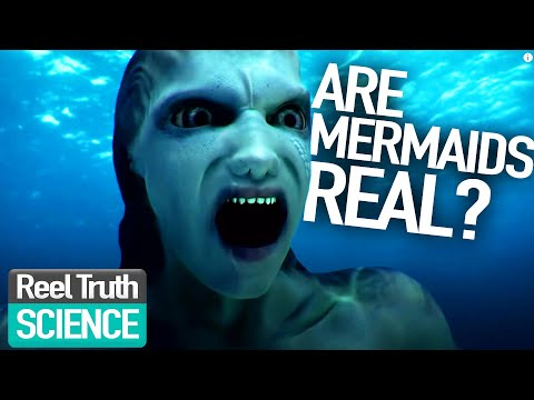 Mermaids The Body Found Are Mermaids Real? | Mermaid Science Fiction Programme | Reel Truth. Science