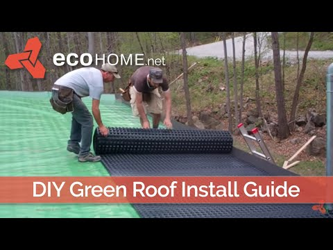 DIY living green roof installation