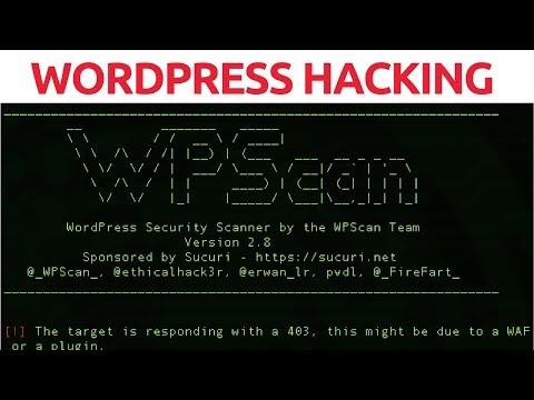WordPress Hacking With WPScan