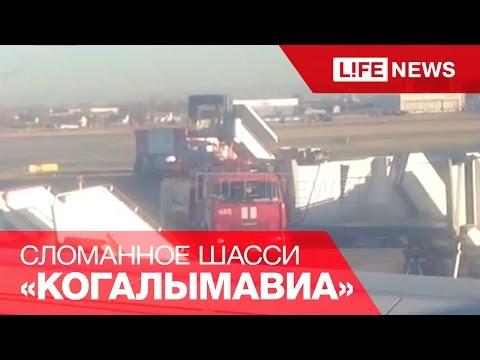 Буксировщик сломал шасси борту «Когалымавиа» перед вылетом в Египет