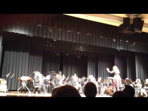 Disney at the Movies played by Hanahan High School Orchestra Band 2014